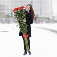 Букет 15 красных роз 150 см.