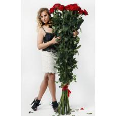 Букет 25 красных роз 160 см.