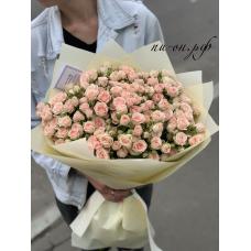31 кремовая кустовая роза