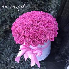 Букет 61 розовая роза в коробке