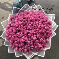 "101 пионовидная роза ""мисти-баблз"" (60 см)"