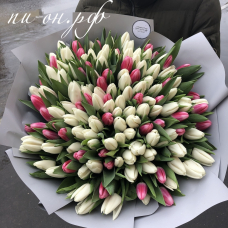 Букет 151 тюльпан