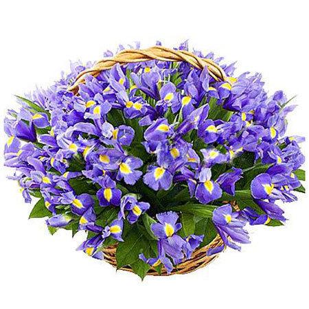 Цветы в корзине Чувство легкости