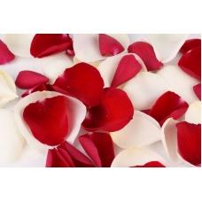 Лепестки роз Жар и холод