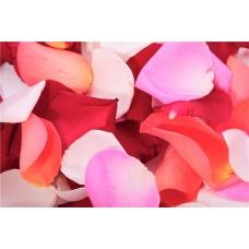 Лепестки роз Любовный бриз