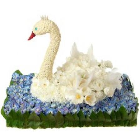 Лебедь на пруду