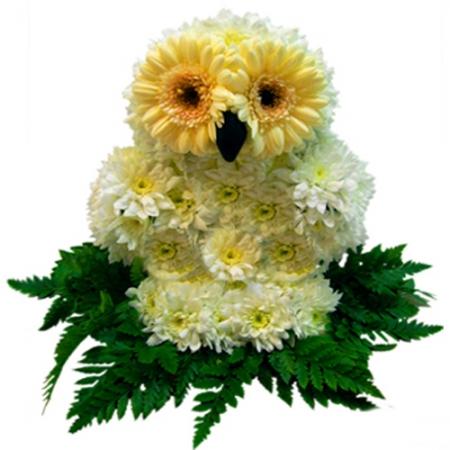 Игрушка из цветов Сова