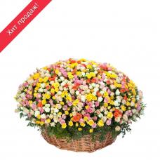 Композиция из кустовой розы (501 роза)