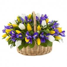 Цветы в корзине Ирисовое чудо
