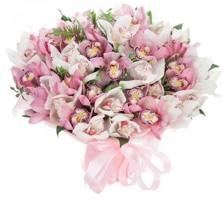 """Букет из 45 орхидей """"Cymbidium"""""""