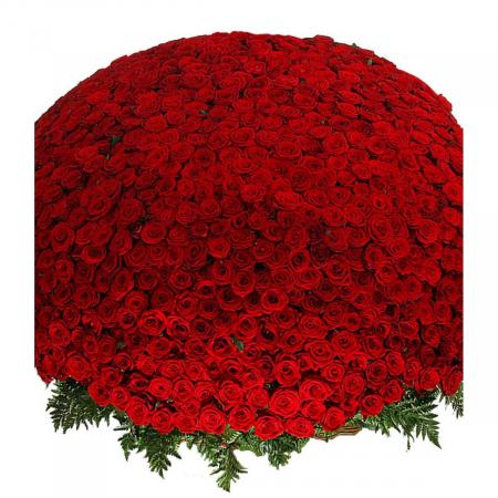 """Композиция из 1001 розы """"Сенсация"""""""