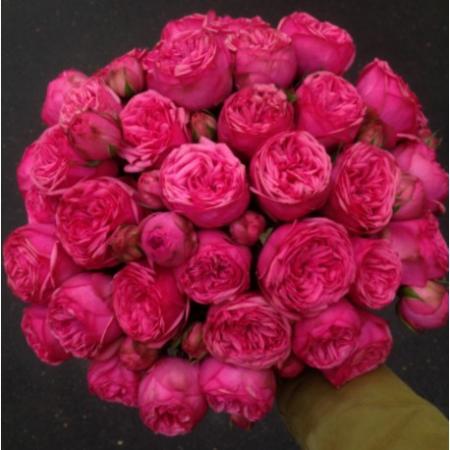 """Букет из пионовидных роз """"Pink Piano"""" (15, 25 или 51)"""
