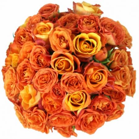 Яркий свадебный букет из роз