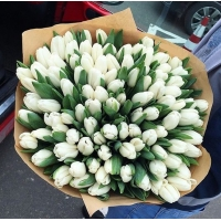 Букет Белые тюльпаны