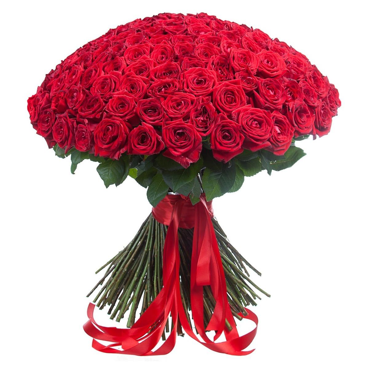 Букет красный розы